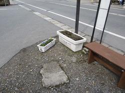 2010-03-28-10-13-24_1200.jpg